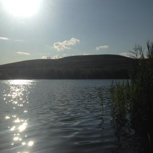 Baggersee Arkenberge