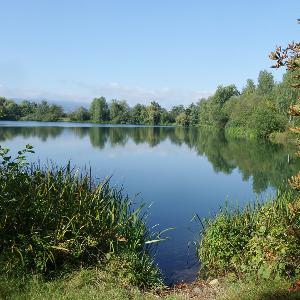 Pp Vienenburger See