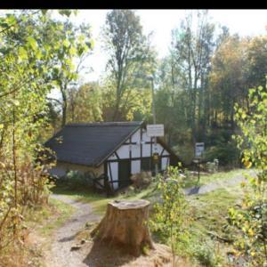 Dümmlinghausen Mühle am Teich.