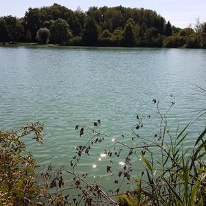 Güttinger See